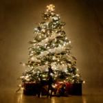 Como desmontar a árvore da Natal em 3 segundos