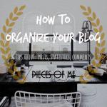 Organização e Gestão do Blog
