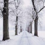 Começa o inverno segunda-feira!